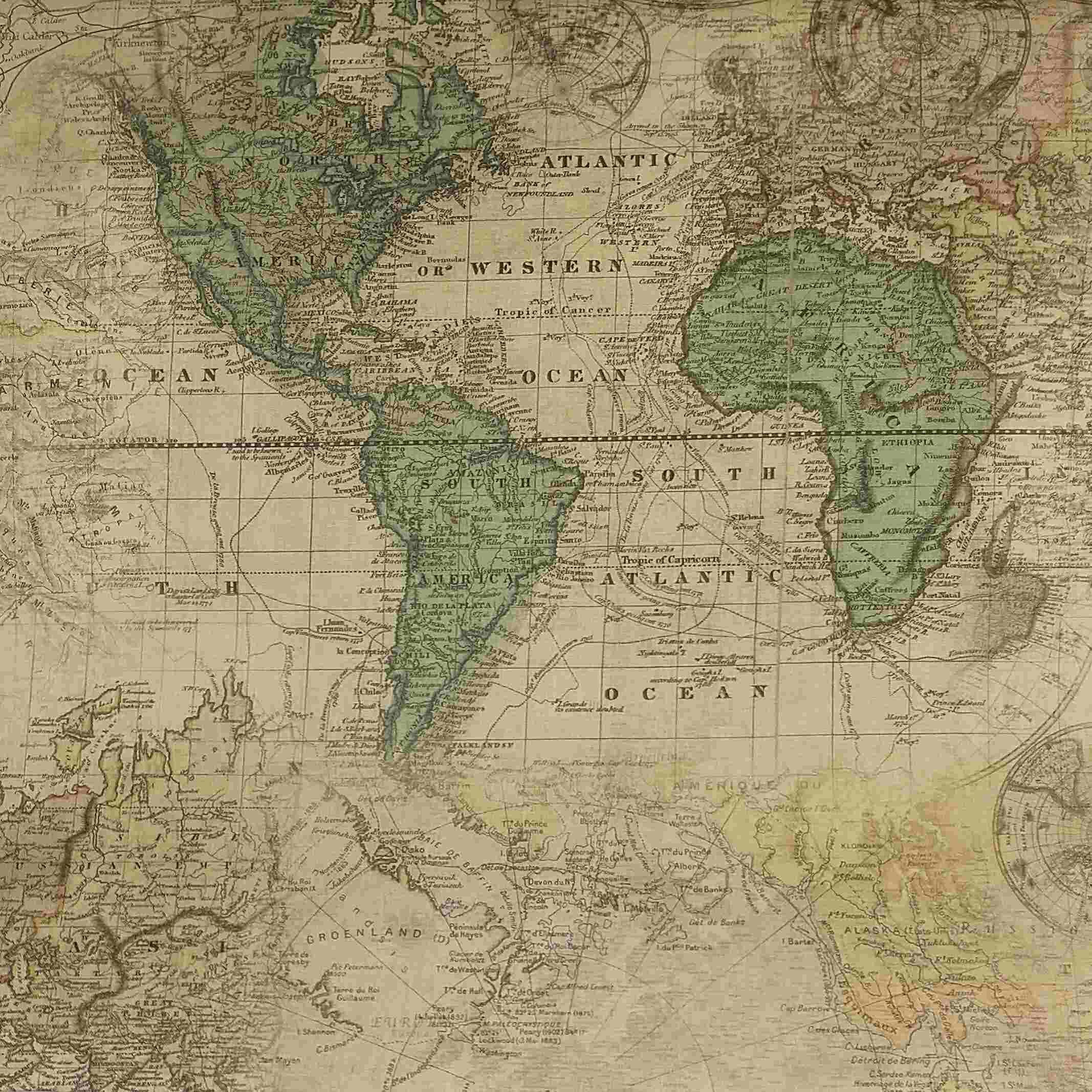 tela de algodón mapa mundi